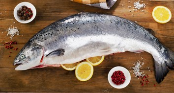 Banning GM Salmon Is a Terrible Idea