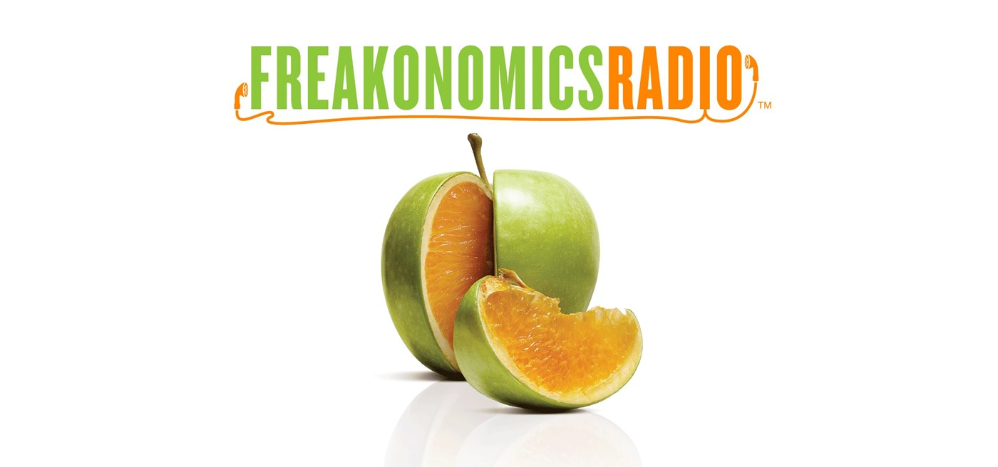 worksheet Freakonomics Movie Worksheet freakonomics essay listen to i pencil on radio foundation for
