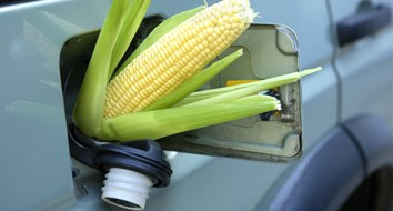 The Real Reason We Have Ethanol in Our Gas