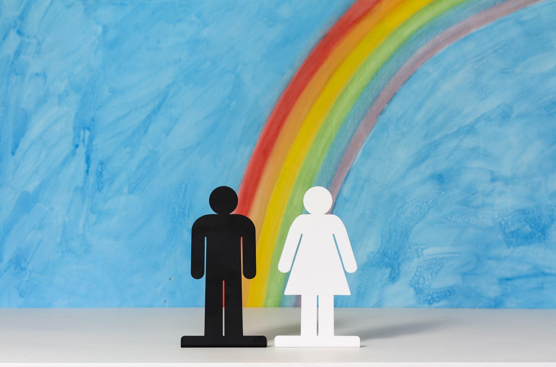 gender equality a myth or reality essay