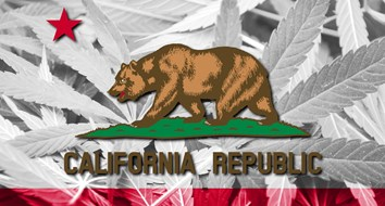California Could Become a Sanctuary State—for Marijuana