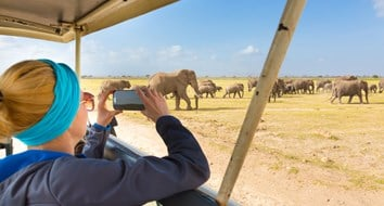 Want to Go on Safari? There's an App for That