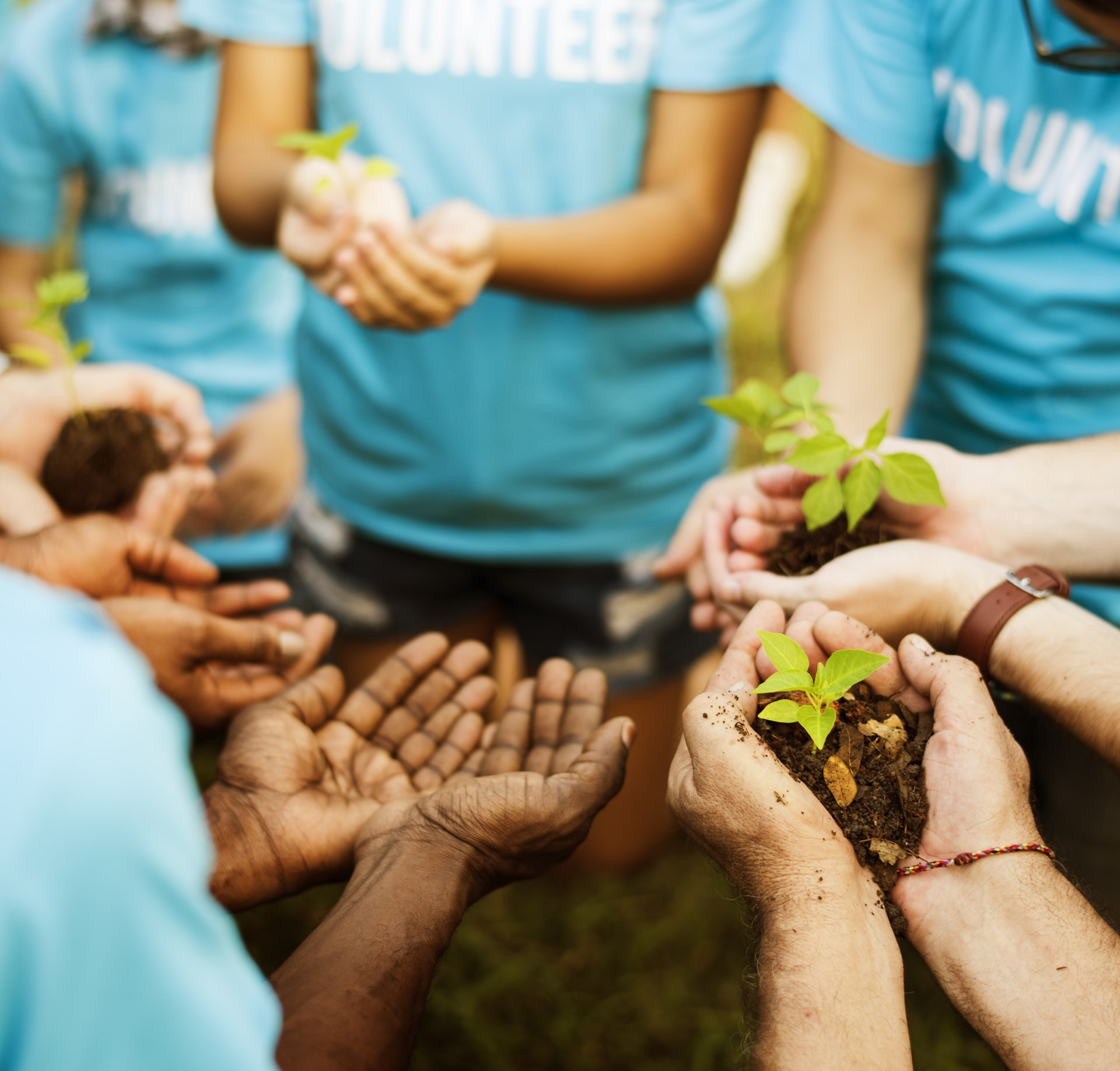 The Practical Case Against Most Volunteer Work - Foundation for ...