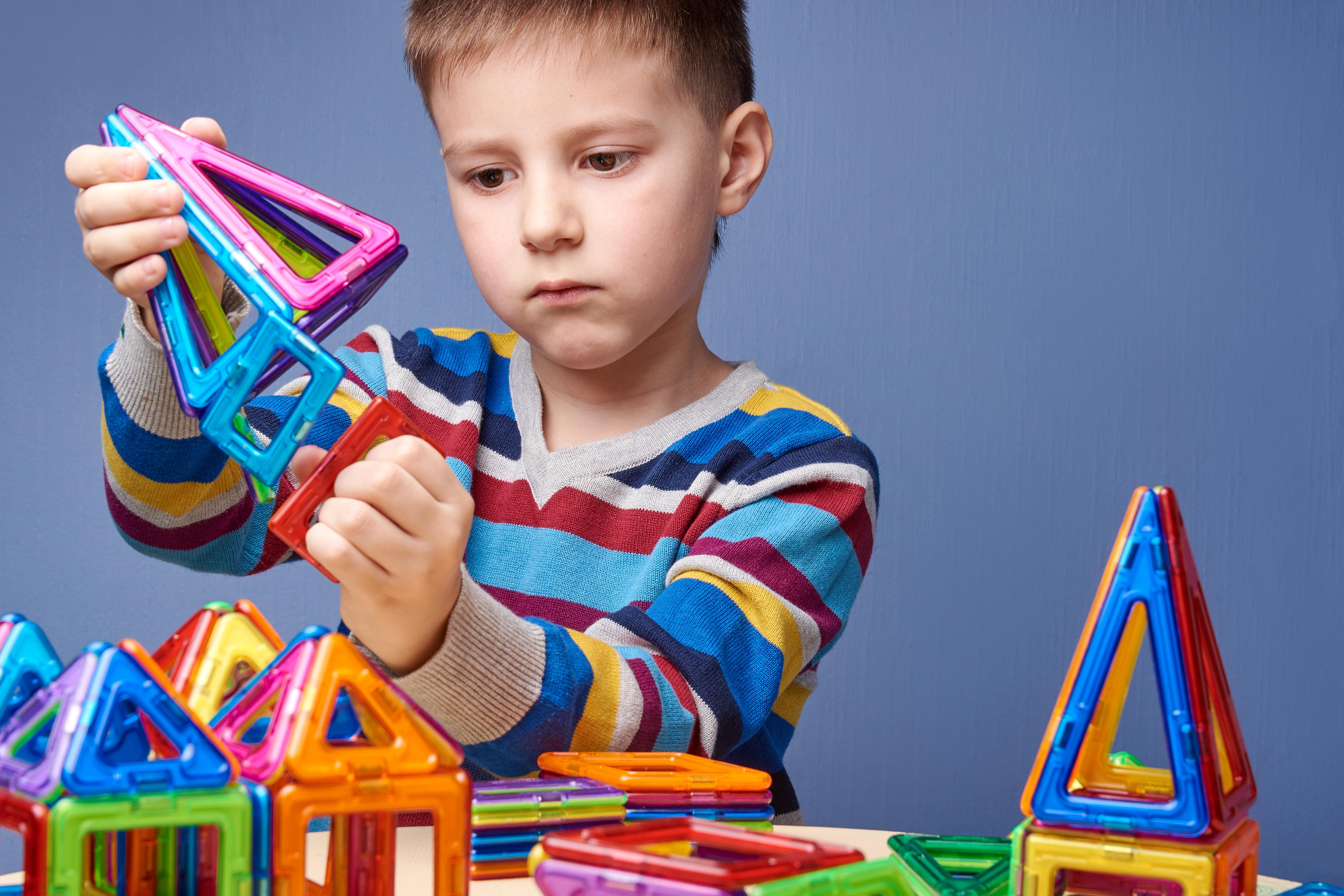 Bailey Bridge Physics Science Education Toy Kids Intelligence Development