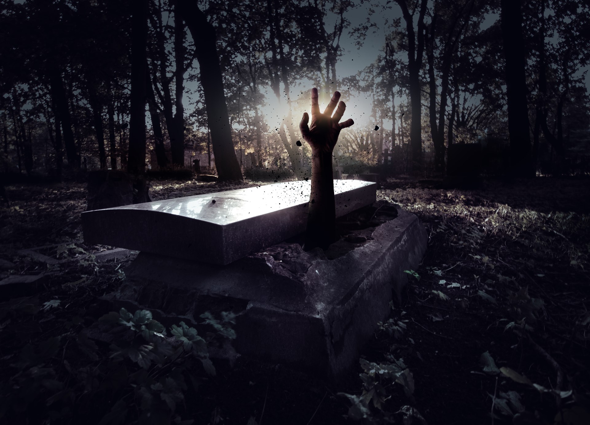 Socialism, Like Dracula, Rises Again from the Grave - Foundation for