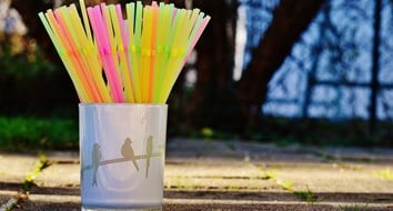 Debunking the (Plastic) Straw Man Arguments
