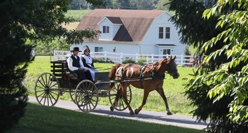 Amish Uber Shows that Entrepreneurship is Contagious